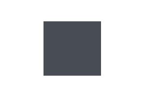 Logo_Puig_P